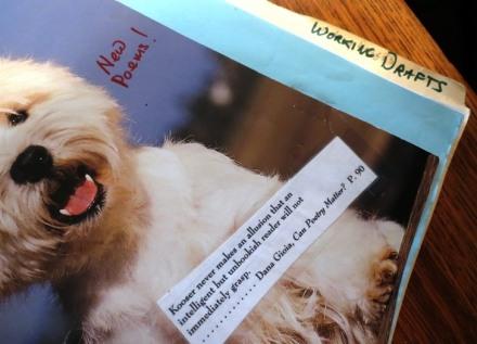 Poem Binder working drafts 2015--8-21
