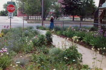 WYflowers