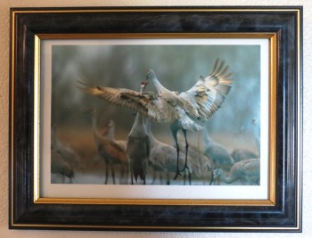 home-retreat-cranes-2016-9-16