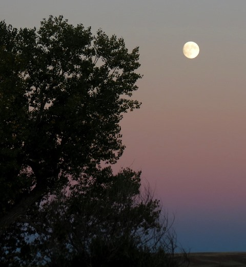 Moonrise 2017--10-3 - small copy for blog
