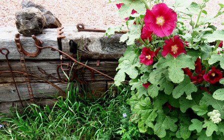 Hollyhocks by rr tie wall - small version for blog