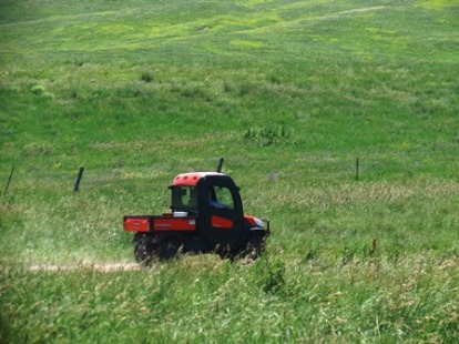 Kubota in pasture - small version for blog