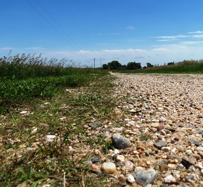 Morning Walk gravel