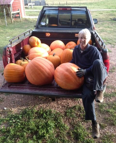 Linda with pumpkin harvest 2013--10-2