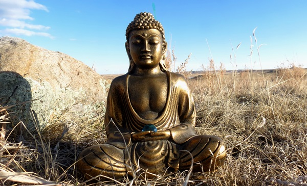 Little Buddha on the Prairie