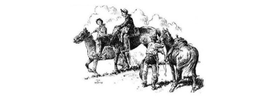 Draine book illustration