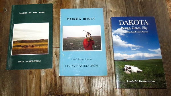 Homesteading in Dakota poetry books